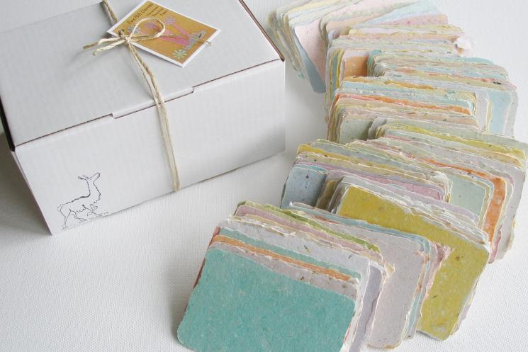 homemade blank mini cards