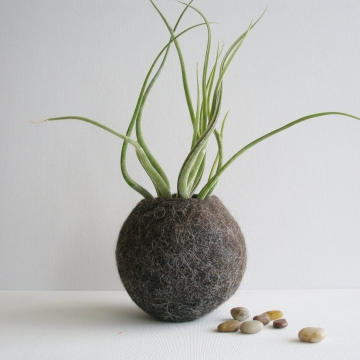 Felt Llama Fibre Vessel. Felt Pod / Air plant Planter. Shelf / Window Sil Decor made from Australian Llama Fibre
