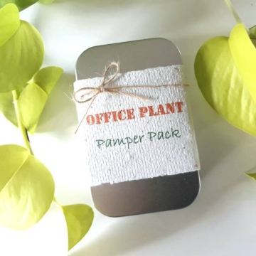 Office Plant Gift, Novelty, Pamper Pack, Indoor Plants, Fertilizer, Organic Care, Workplace kit, Office Humor, Colleague, Secret Santa, Eco