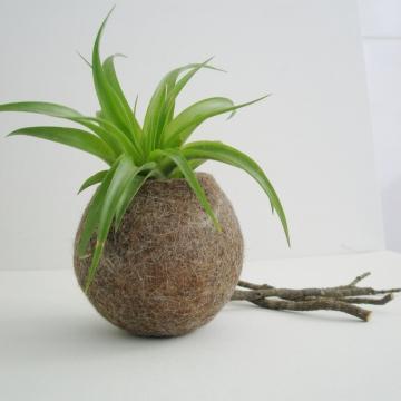 Small Llama Fibre Pod - Gift Boxed - Soft - Rustic - Authentic. Felt Pod - Felted bowl - Organizer - Vessel - Natural Homewares