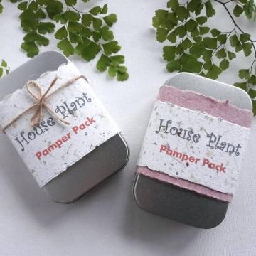 6 x House Plant Pamper Gift Pack, Indoor Plants, Organic Fertilizer, Manure Tea bag, Indoor plant lover, Planter, Florist Supplies, Bulk lot