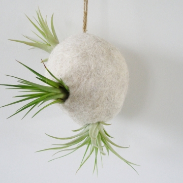 Llama Fiber - Air Plant Pod - Air Plant Bubble - Air Plant Planter - Natural Fibre - Indoor Planter - Hanging Planter - Indoor Pod Planter