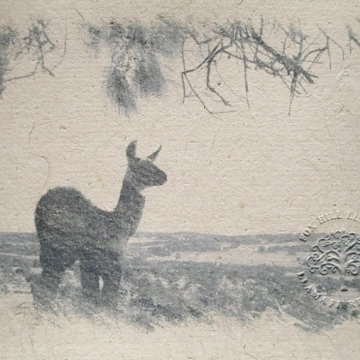 Print, Llama Fibre Paper Limited Edition of 30. Hand-made Recycled Paper with Llama Fibre
