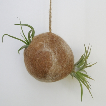 Llama Fibre Planter, Air Plant Bubble for Indoors, gift boxed