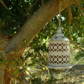 Bird Nester, Ornate Lantern, Llama Fibre Nesting Material, Garden Chic, Metal Outdoor lantern, Garden Decor, Garden Feature, Hanging Lantern