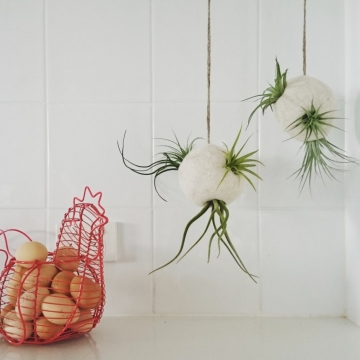 Air Plant Hanger - Air Plant Bubble - Llama Fibre - Natural Decor - Felt Pod - Indoor Planter - Air Plant Pod - Tillandsia Planter - Pod