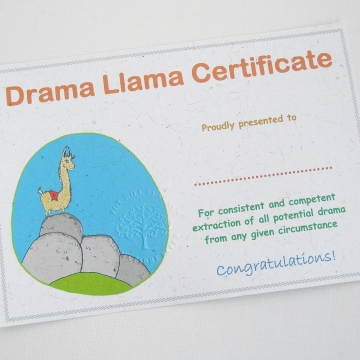 Office Certificate, Humerous Award, Novelty Certificate, Drama Llama, Funny, Amusing Certificate, Office Christmas Party, Drama Lover, Queen