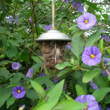 Bird Nester - Llama Fibre Native Bird Nester - Gift Boxed Bird Nester