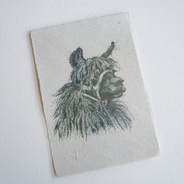 Llama Print, Paper with llama poo