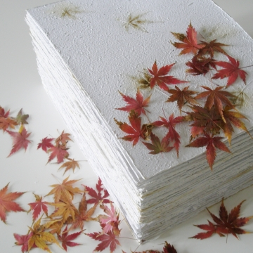 Paper with Maple Leaves