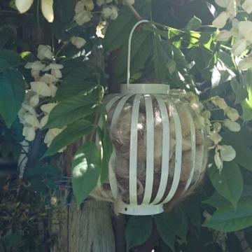 Bird Nester, Llama Fibre. Nesting Material to Attract Native Birds to your Garden, Mother's Day, Native Garden, Garden Gift, Bird Gift, Eco