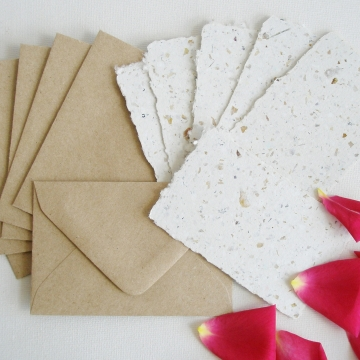 6 Rose Petal Mini Gift Cards with Envelopes