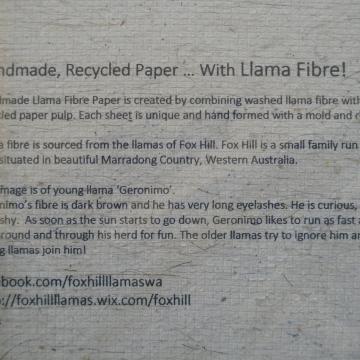 Llama Fibre Card. Hand Made recycled paper with llama fibre! Blank Cria Card - Llama Card - Llama Lover - Llama Gift - Llama Greeting Card