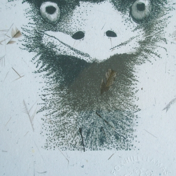 Emu Print, Paper with Emu Feathers